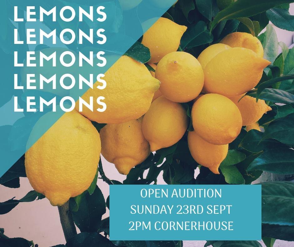 Open auditions for Lemons Lemons Lemons Lemons Lemons by Sam Steiner