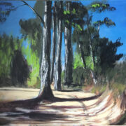 eucalyptus forest malaga