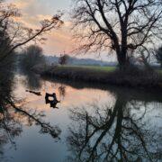 The River Mole – David Le Vay