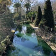 Wisley pond – Margaret Voller